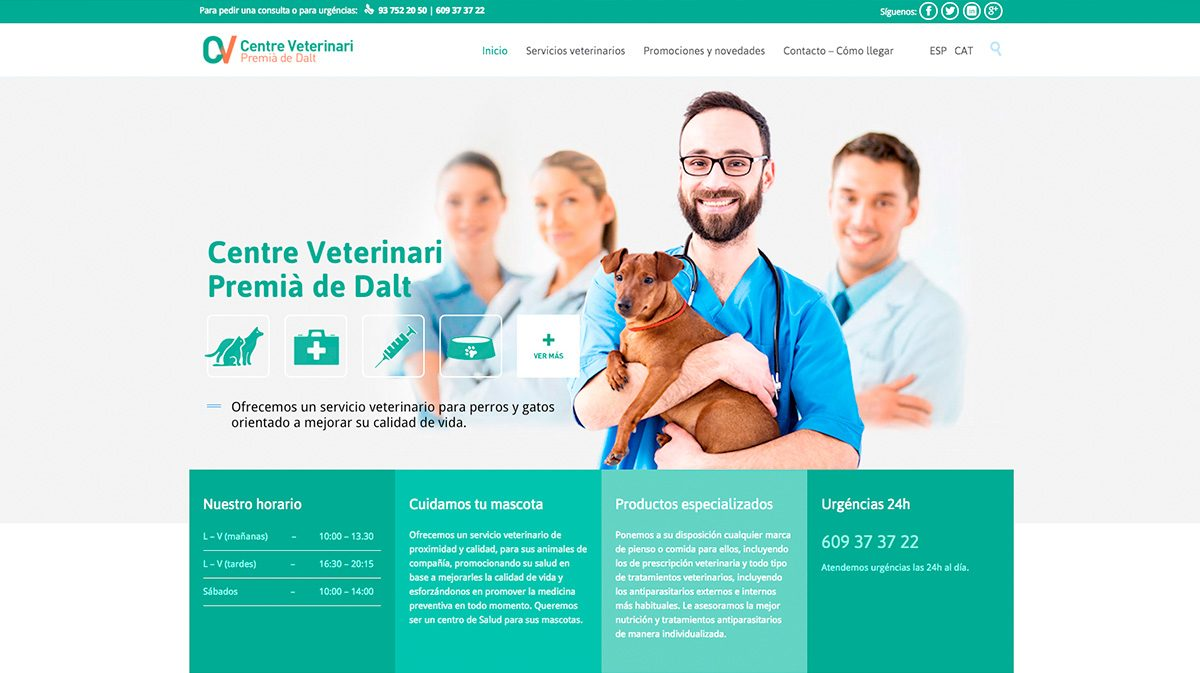 diseno-pagina-web-veterinarios